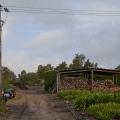 20120927-img_5016-e-k